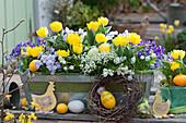 Balkonkasten mit Tulpen, Blaukissen, Hornveilchen, Traubenhyazinthen und Duftsteinrich österlich dekoriert mit Ostereiern und Holz-Hühnern