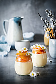 Apricot and eggnog mousse for Easter