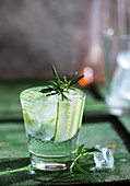 A Gin & Tonic with cucumber and rosemary