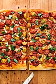 Fresh tomato and gorgonzola pizza