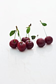 Sour cherries with stems on a white marble surface