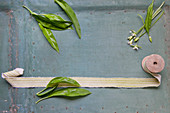 Fresh wild garlic with a ribbon roll