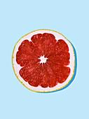 Ruby grapefruit slice