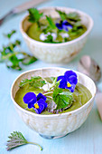 Cream soup with nettles in handmade ceramic bowls, decorated with nettle sprigs and violet flowers