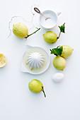 Ingredients for lemon sorbet