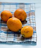 Fresh medlar fruits