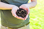 A person holing composting worms