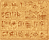 Cuneiform Characters