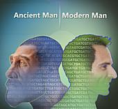 Human Evolution, Genetics Research