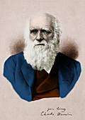 Charles Darwin, English Naturalist