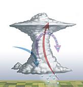 Hail Storm Cloud, Illustration