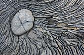 Pahoehoe Lava Pattern at Sullivan Bay