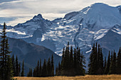 Northeast Face of Mt. Rainier, USA