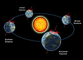 Earth's Orbit with Seasons, Illustration
