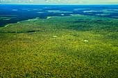 Expansive Grassland And Rainforest, Congo