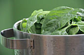 Healthy Food, Vegetable, Spinach Leaves