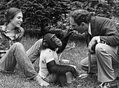 Nim Chimpsky shares lunch with researchers