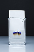 Paper chromatography, 2 of 3