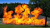 ERT Detonated Explosives, 2012
