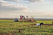 New Inkajijik Structure, Maasai Mara; Kenya