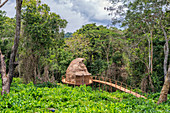 Ngaga Treehouse, Odzala, Congo