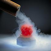 Liquid nitrogen being poured over balloon