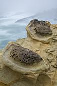Sandstone concretions