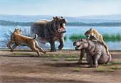 Sabretooth cats and hippopotamus prey, illustration