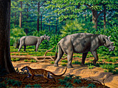 Uintatherium prehistoric mammal, illustration