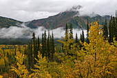 Autumn in Alaska