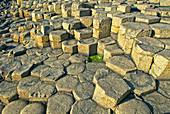 Basalt, Giants Causeway, Northern Ireland