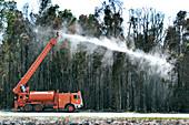Firemen spraying water at trees, Florida, USA