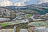 Wind farm, Cantabria, Spain