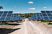 Solar farm, Cumbria, UK