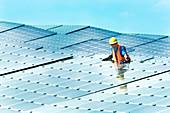 Technician checking solar panel