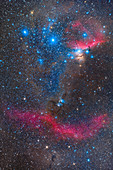 Orion's Belt and nebulae, optical image