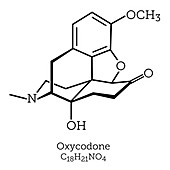 Molecular Structure of Oxycodone