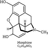 Morphine, molecular model