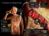 10 Steps to Weight Gain