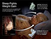 Sleep Fights Weight Gain