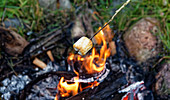 Roasting a marshmallow over a summer campfire