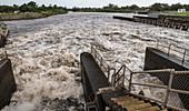Hurricane Irma Floodwaters