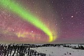 Dim Auroral Arc with Inuit Navigation Stars