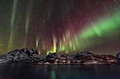 Aurora from Lofoten Islands, Norway