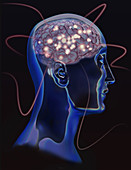Brain Activity, Conceptual Illustration
