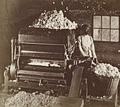 Cotton Gin, 1870