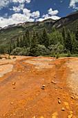 Mining Runoff Pollutes Animas River, Co