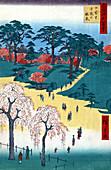 Temple Garden Cherry Blossoms, 1857