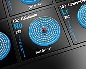 Nobelium, atomic structure