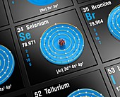 Selenium, atomic structure